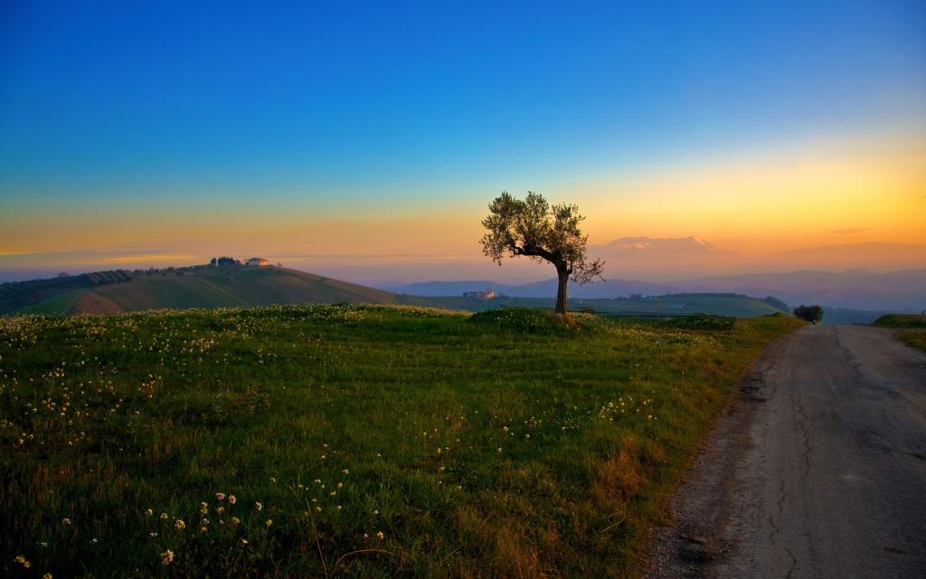 landscape_3