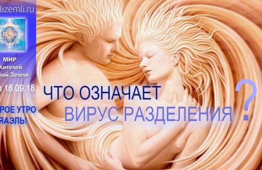Доброе Утро с ЯАЭЛЬ! Что такое «вирус разделения»?