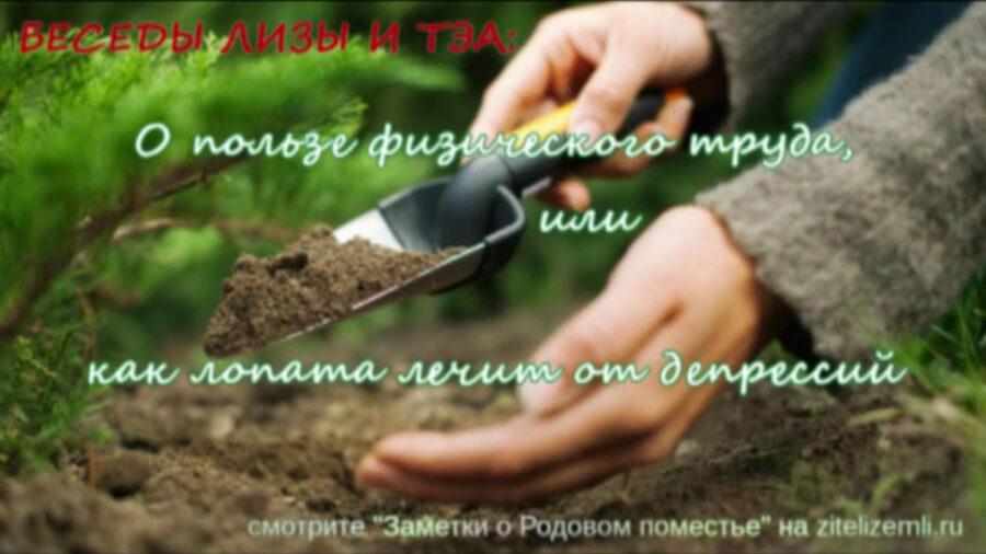 VIDEO беседы Лизы и ТЭА: О пользе физического труда или как лопата лечит от депрессий