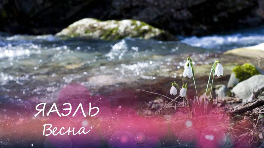 ЯАЭЛЬ | Весна