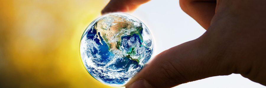 Вебинар «Мое воплощение на Земле»