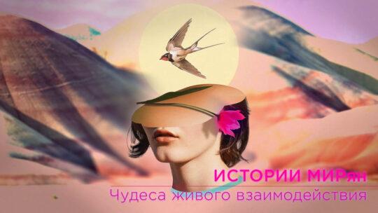 ИСТОРИИ МИРян. Чудеса живого взаимодействия.
